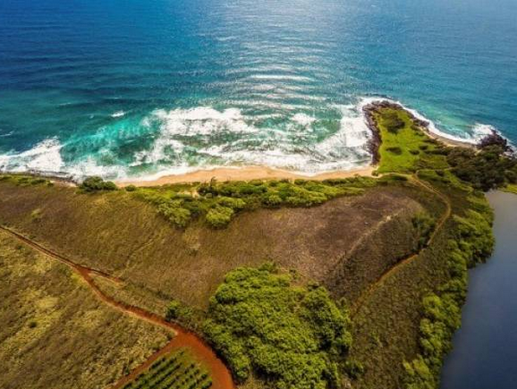 Investor's Corner: 59 Acre Beachfront Parcel